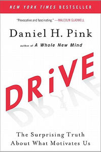 2015_book_cover_drive
